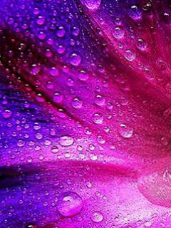 Colorful wallpaper with water drops