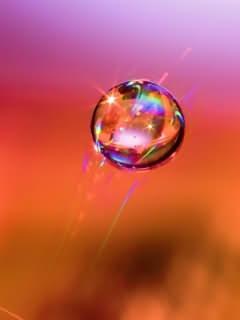 Colour Bubble Wallpaper