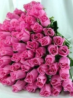 This My Sweet Roses mobile wallpaper is compatible for Nokia, Samsung ...