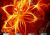 3D Fire Flower Android Theme