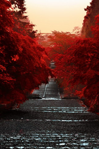 Japan-Honshu-Island-iphone-wallpaper-ilikewallpaper_com
