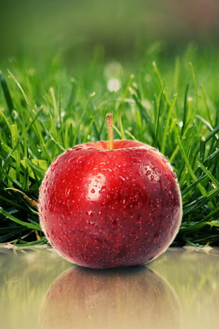 Download Grass Fresh Apple Iphone Wallpaper Mobile